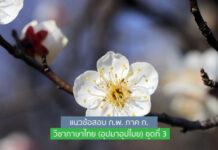 แนวข้อสอบ ก.พ. ภาค ก. วิชาภาษาไทย (อุปมาอุปไมย) ชุดที่ 3